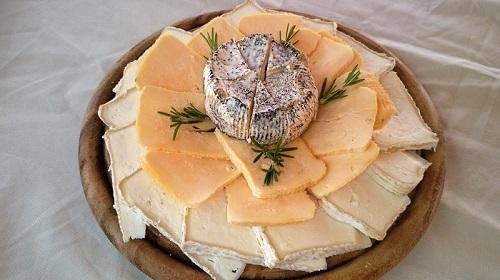 מגשי גבינה